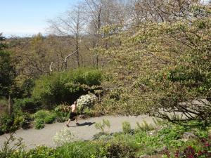 春まだ浅い3月末に庭園内を上半身裸でジョギング