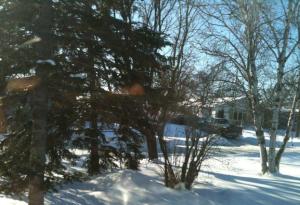 winnipeg-winter